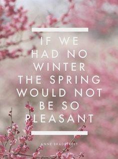 If we had no winter...