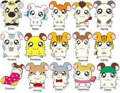Each hamster had a different personality that kids could identify with Animal Drawings, Cute Drawings, Japanese Hamster, Chibi, Pokemon, Happy Tree Friends, Arte Disney, Anime Animals, Anime Kawaii
