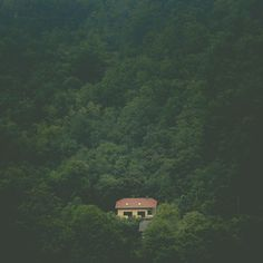 Post with 0 votes and 129 views. Little house in the woods Minimal Photography, Forest House, House In The Woods, Architecture, House Styles, Places, Water, Instagram Posts, Pictures