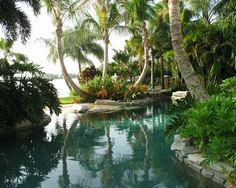 Tropical Landscape Design, Pictures, Remodel, Decor and Ideas – page 15 - Piscina Tropical Pool Landscaping, Tropical Garden Design, Florida Landscaping, Backyard Landscaping, Pool Backyard, Landscaping Design, Tropical Decor, Tropical Gardens, Bali