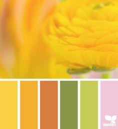 C O L O R Inspiration flora hues by Design Seeds. Scheme Color, Colour Pallette, Color Palate, Colour Schemes, Color Patterns, Color Combos, World Of Color, Color Of Life, Pantone