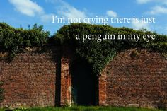 Community Post: If Phil Lester Tweets Were Motivational Posters