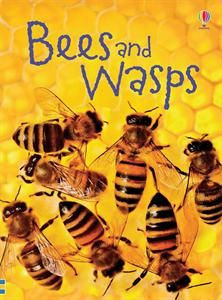 Teaching by example.  My kids are afraid of bees/wasps.  So I got them a book and I've told them they need to learn about them so they don't have to be so afraid.  But here I am, terrified of snakes and spiders...I guess I need to follow my own advice!!  Explore. Imagine. Love. blog