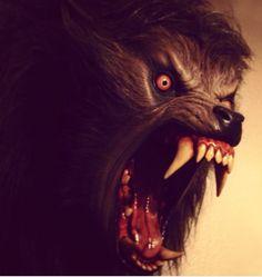 An American Werewolf in London...