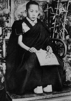 a young dalai lama