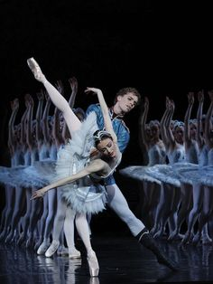Our 2016 season: A snapshot   The Australian Ballet