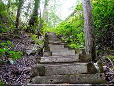 Amazing #hikes and #nature on British Columbia's Sunshine Coast || http://www.rtwgirl.com/bcs-sunshine-coast/