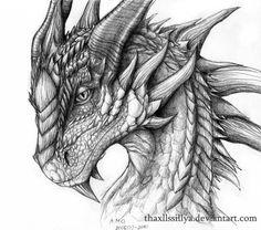 dragon drawings by thaxllssillya -  9