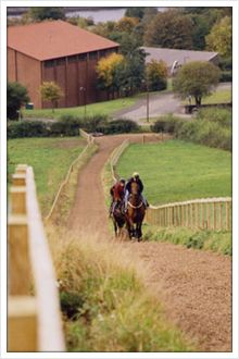 From rwjohnsonracing.co.uk.  The best 2 years of my life were spent here, Grange Farm Racing Stables in Newburn.  - JE