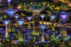 'Gardens by the Bay' Singapore is unlike anything you have ever seen before- Restinghat.com :http://www.restinghat.com/gardens-by-the-bay-singapore-is-unlike-anything-you-have-ever-seen-before-restinghat-com/
