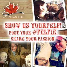 Facebook and Twitter timeline image New Brunswick, Nova Scotia, Farm Life, Quebec, Cattle, Farmers, Timeline, Ontario, Promotion
