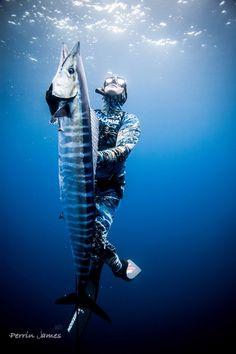 panama spearfishing wahoo