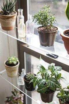 DIY: floating window shelves