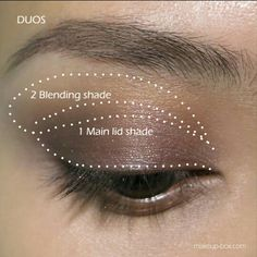 Shuishi on makeup pinterest eyeshadow light colors and diagram more information ccuart Images