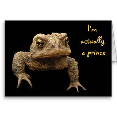 American Toad Valentine Greeting Cards
