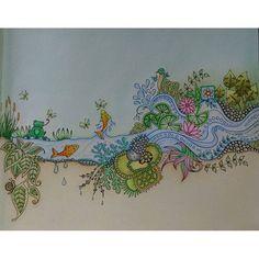 Instagram media renatagclementino - #florestaencantada #jardimsecreto #johannabasford @johannabasford #esrarengizbahce #enchantedforest #secretgarden #lostocean #oceanoperdido #coloringbook #livrodecolorir #livrosinterativos #artecomoterapia #lapisdecor #mycreativespace #polychromos #colourpencil #coloriage #coloring #colorindo #artthérapie #coloriagepouradulte
