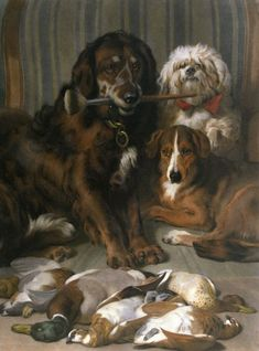 Image result for golden retriever and black dog