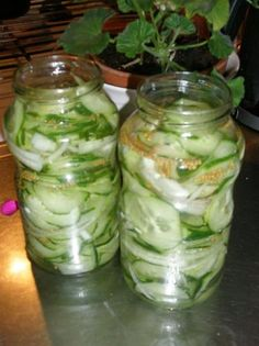 Pickles, Cucumber, Diy And Crafts, Cabbage, Food And Drink, Lunch, Vegan, Vegetables, Healthy