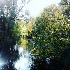 A river near where I live