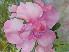 Azalea pink flower painting by Libia Goncalves