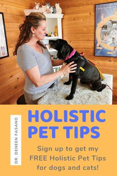 Deneen's Holistic Pet Tips Chapter 1 - PawromaTherapy/Holistic Pet Tips and Holistic Veterinary Info for Dogs and Cats Animal Nutrition, Pet Nutrition, Funny Cats And Dogs, Healthy Pets, Pet Health, Health Care, Dog Boarding, Dog Pictures, Animal Pictures