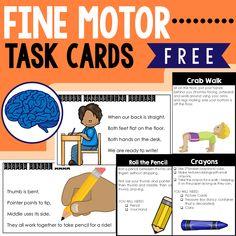 Fine Motor Skills Ta