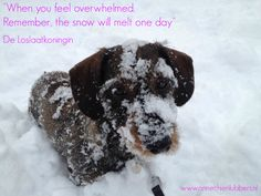 """""""When you feel overwhelmed. Remember, the snow will melt one day."""" Annechien Lubbers www.deloslaatkoningin.nl"""