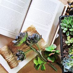 I adore the vintage book planter I made for my succulents! The tutorial is over on CraftsnCoffee.com today. #crafts #succulents #vintagebookart