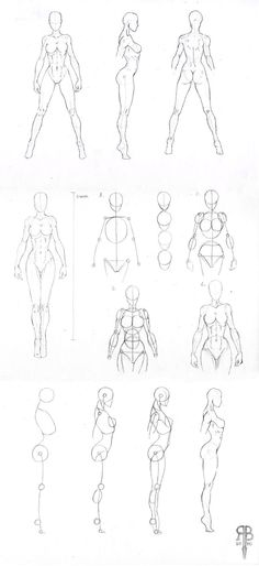 female body shapes by Rofelrolf
