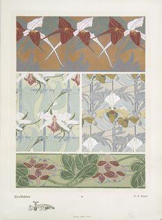 """""""Orchidées"""", pl. 29, by E.A. Seguy."""