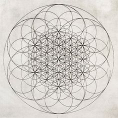FLOWER OF LIFE represents several cool things.  I should have this.