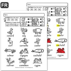 C dur et C doux: animaux Amelie Pepin, Learning French For Kids, Learn French, Word Work, Bullet Journal, Words, School, Classroom Ideas, Reading Comprehension