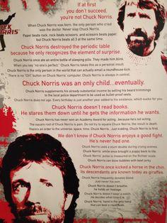 Gotta love Chuck Norris jokes.
