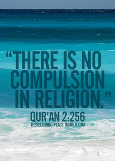 There is no compulsion in religion Qur'an (2.256) you can't force anyone to believe, you simply convey the message of truth, and pray that Allah guides them.