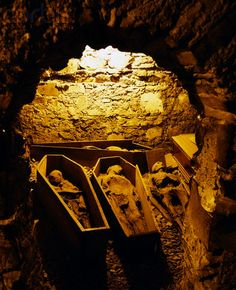 St. Michan's Church, crypt, Dublin It's so cool, been down there.