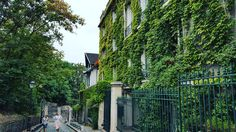 Link in bio#thatchillaxdude  Green!  #followyourarrow #travel  #wandern #travelbug #travelgram #wanderlust #notallwhowanderarelost #instalike #instatravel #instatraveling #photography #holiday #tourism #followme #travelblogger #passportready #worldtravel #natgeo #wander #explore #explorer #summer #europe #france #paris #parisisalwaysagoodidea