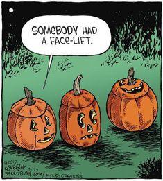 8 Most Delicate Halloween Quotes Humor. Halloween Humor, Happy Halloween Quotes, Halloween Cartoons, Holidays Halloween, Vintage Halloween, Halloween Crafts, Funny Halloween Pictures, Halloween 2019, Halloween Images