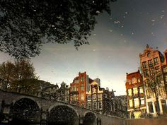 Amsterdam puddle