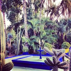 re:pin BKLYN contessa :: Jardin Majorelle de YSL. #cobalt #marrakech