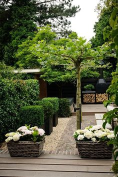 De geheime tuin (Beauty Landscapes Trees)