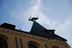 Cat House - Sightseeing in Riga