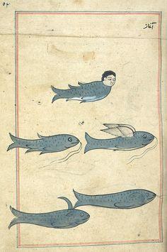 blue - fish - Illustrations from Marvels of Things Created and Miraculous Aspects of Things Existing (Ajā'ib al-makhlūqāt wa-gharā'ib al-mawjūdāt - كتاب عجائب المخلوقات وغرائب الموجودات) by Zakarīyā' ibn Muḥammad al-Qazwīnī, originally published in Medieval Manuscript, Medieval Art, Illuminated Manuscript, Medieval Drawings, Illustrations, Illustration Art, Mythical Sea Creatures, Strange Creatures, Petit Tattoo