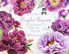 Watercolor Peonies Flowers Clipart, Purple, Violet, Bordeauxs, Wedding Invitation, Floral set Lilac Greeting card Peony Diy. Purple Peonies