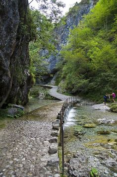 Hiking trails in the region of  Lombardia, Italy. It's a beautiful world, isn't it?