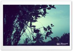 Evening Sky HD Wide Wallpaper for Widescreen