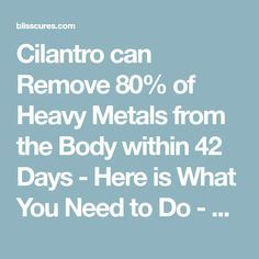 Cilantro can Remove 80% of Heavy Metals from the Body within 42 Days - Here is What You Need to Do - BLISSCURES