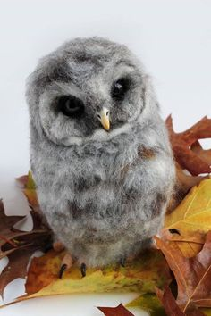 Needle felted barred owl owlet, by Yvonne Herbst. Yvonne's workshop on etsy and Facebook