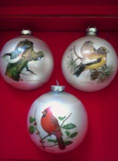 Collection de Noël ornements oiseau en Corning avec Original boîte de 1975 Corning Glass Works, qui est maintenant Corning Incorporated, a été l'un de la première Co.s USA de commencer à faire des ornements de la fin des années 1930 quand WWII arrêté la fourniture des ornements allemands. Ils ont continué à faire leurs ornements de verre populaire jusqu'aux années 80. Chuck Ripper - ensemble Klipspringer édition de 3 ornements en verre magnifique avec une superposition de couleur qui…