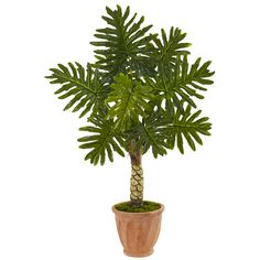 Let this 4.5'H beautiful monstera plant bring the warmth of a tropical island into your home or office. Attention to detail and high quality materials are evident in every inch of this tree