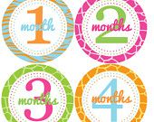 Monthly Onesie Stickers...Bright Animal Prints...Favorite Baby Shower Gift for New Moms and Baby Girls...Month Stickers